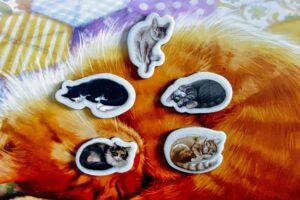 Cat tokens